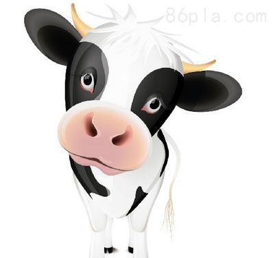 犊牛胃结构示意图