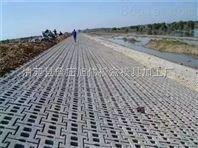 农田水利护坡塑料模具基础设施