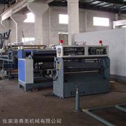 DM系列宽幅超厚塑木复合泡材生产线