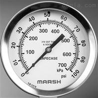 美國MARSH壓力表+溫度計